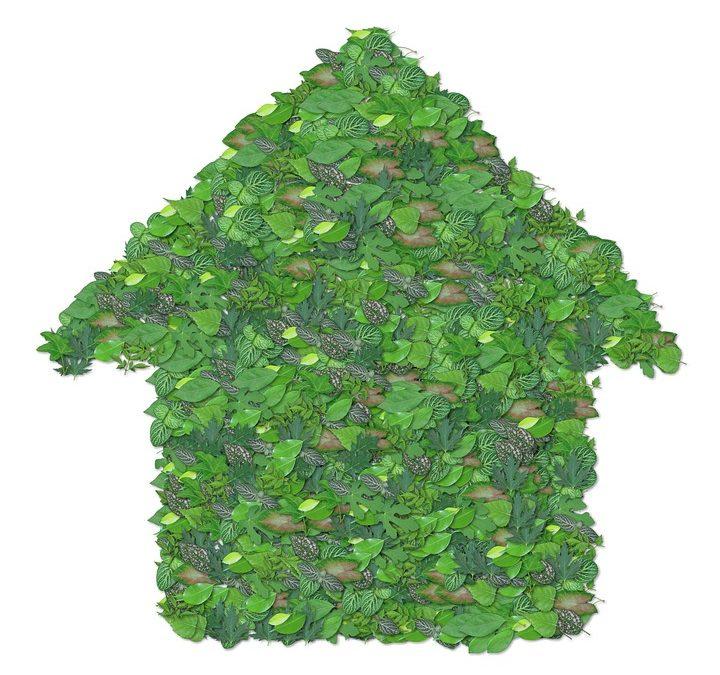 ¿Cómo se construye una casa ecológica?