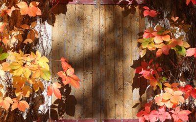 Decoración del hogar en otoño