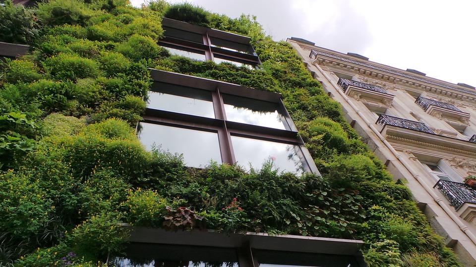 Haz tu hogar eco-friendly