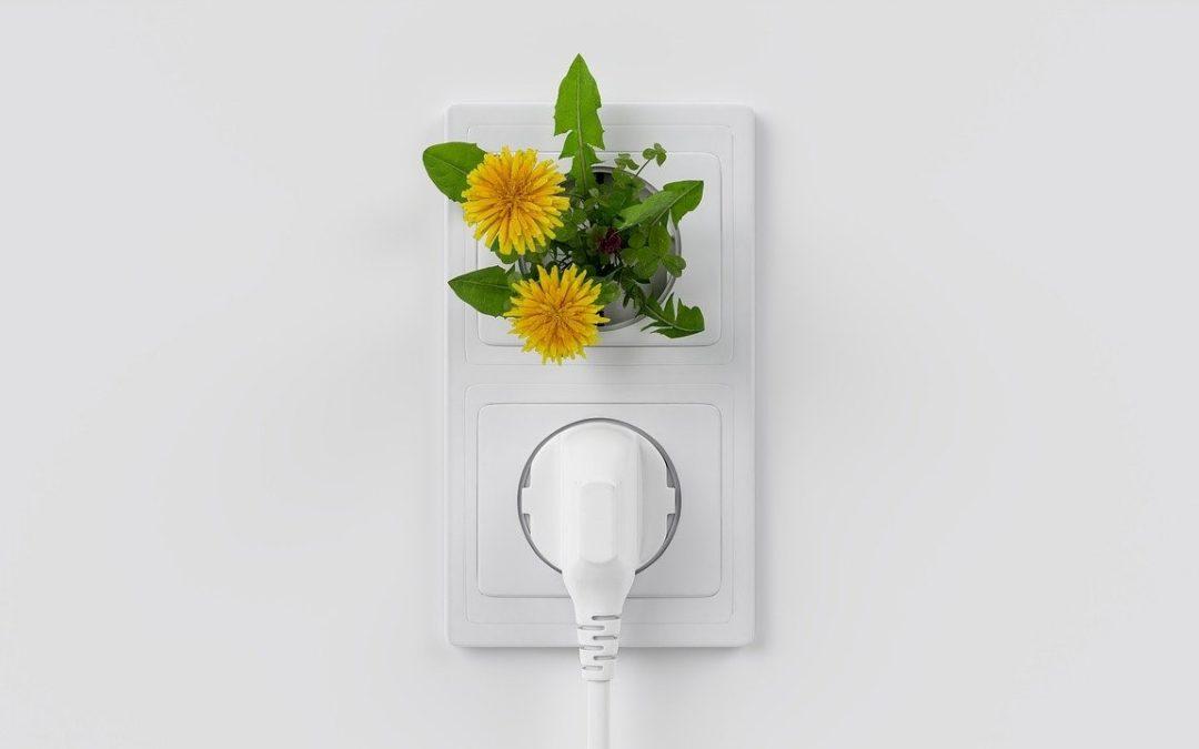 Consejos para bajar tu factura de luz haciendo unas reformas en tu casa
