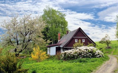 ¿Cómo decorar un jardín?